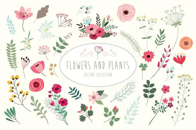 Collection florale dessinée à la main avec différentes fleurs et feuilles.