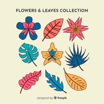 Collection florale dessinée à la main