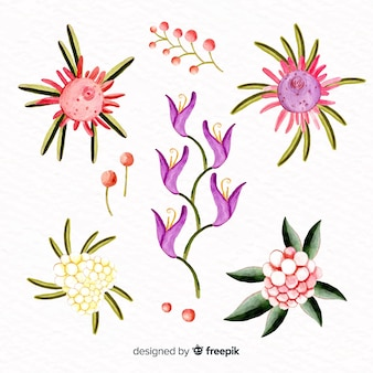 Collection florale de style aquarelle