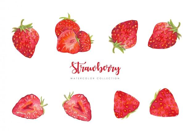 Collection de fraises fraîches