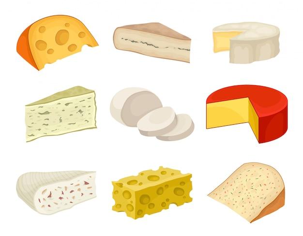 Collection de fromages de variétés sur fond blanc.