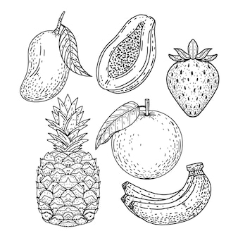 Collection de fruits dessinés à la main de gravure
