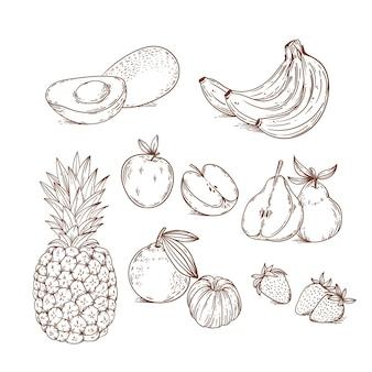 Collection de fruits dessinés à la main