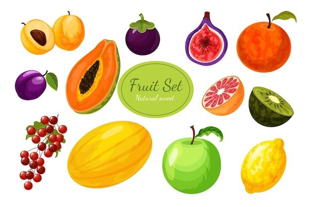 Collection de fruits détaillée