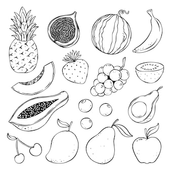 Collection de fruits doodle dessinés à la main