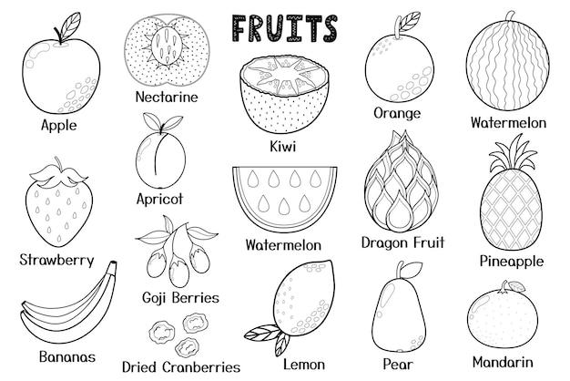 Collection de fruits noirs et blancs éléments isolés d'aliments sains idéal pour les recettes de pages à colorier