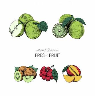 Collection de fruits style dessinés à la main