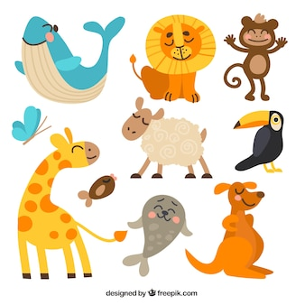 Collection funny animal