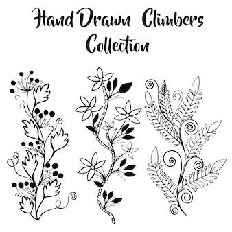Collection de grimpeurs floraux dessinés à la main