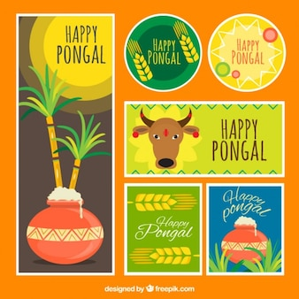 Collection happy pongal