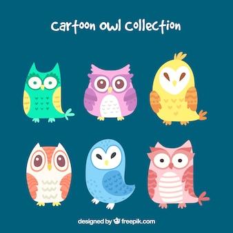 Collection de hibou coloré de bande dessinée