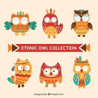 Collection des hiboux ethniques amusants
