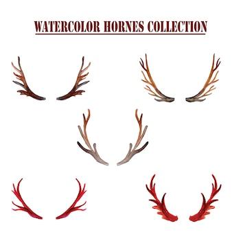 Collection horns aquarelle