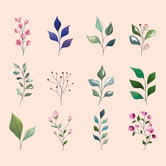 Collection d'icônes de feuilles et de fleurs