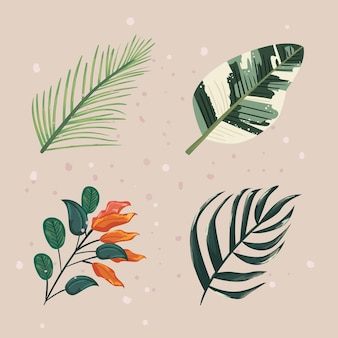 Collection d'icônes de feuilles de plantes naturelles