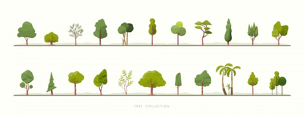Collection d'icônes vectorielles arbre vert