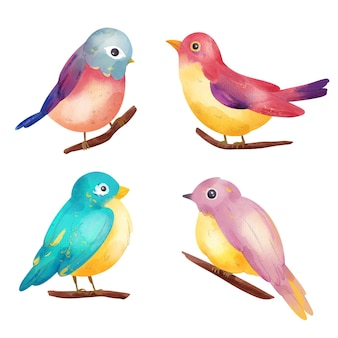 Collection d'illustration d'oiseau aquarelle