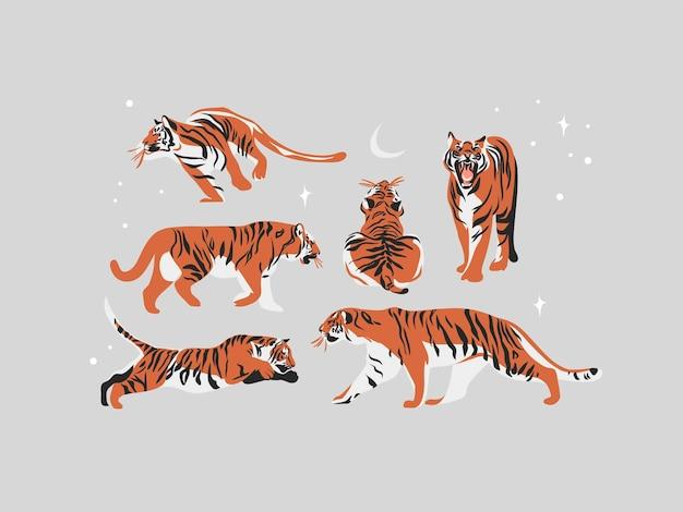 Collection d'illustrations dessinées à la main sertie de tigres de la faune