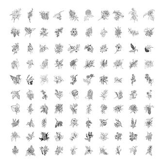 Collection d'illustrations monochromes d'arbustes