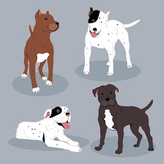 Collection illustrée de pitbull dessinés à la main
