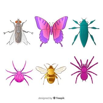 Collection d'insectes colorés