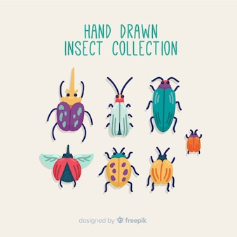 Collection d'insectes dessinés à la main