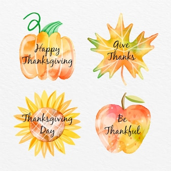 Collection d'insignes de thanksgiving aquarelle