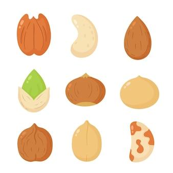 Collection de jeu de dessin animé de mélange de noix