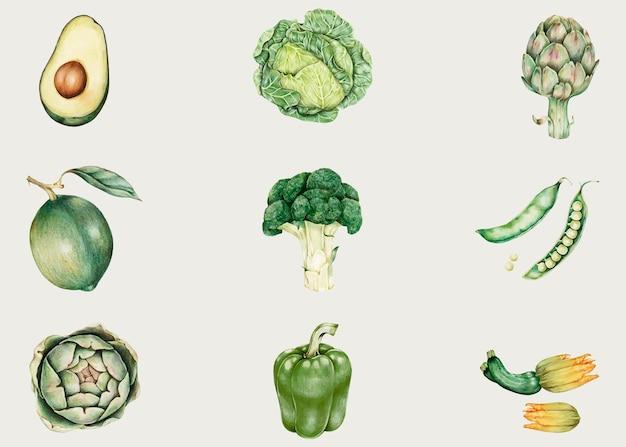 Collection de légumes biologiques