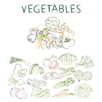 Collection de légumes dessinés à la main