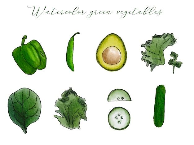 Collection de légumes et d'herbes vertes à l'aquarelle