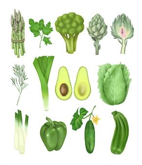 Collection de légumes verts dessinés à la main (bouquet d'asperges, artichaut, concombre, avocat, brocoli, poivron et autres), illustration isolée