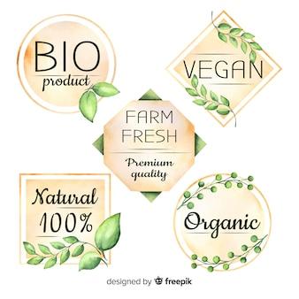 Collection de logo aquarelle aliments biologiques