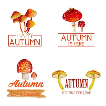 Collection logo automne