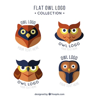 Collection de logo de hibou drôle