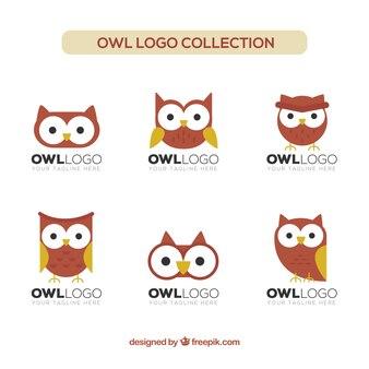 Collection de logo hibou plat