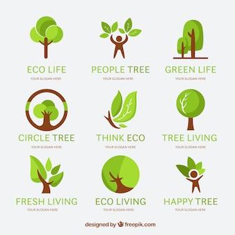 Collection de logos d'arbre dans le style plat