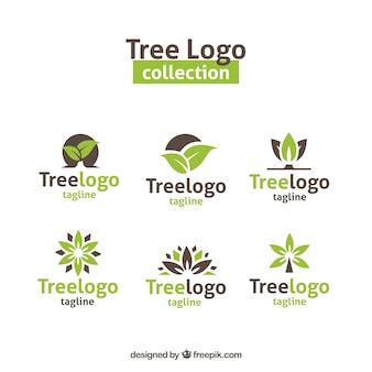 Collection de logos d'arbres modernes