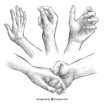 Collection de mains avec des poses différentes dans un style réaliste