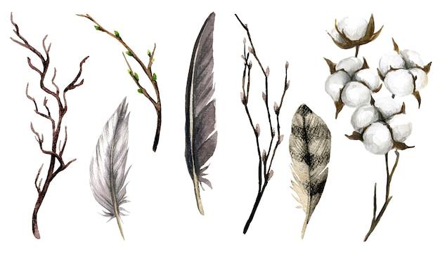 Collection marron de branches de plumes et de boîtes de coton