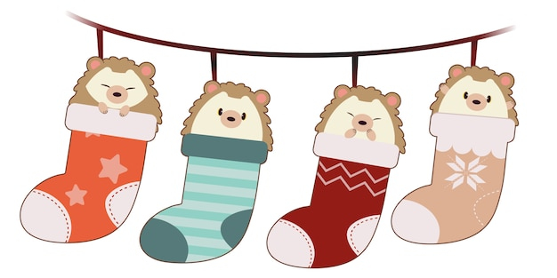 La collection de mignon hérisson et amis dans les grosses chaussettes accrochées au mur