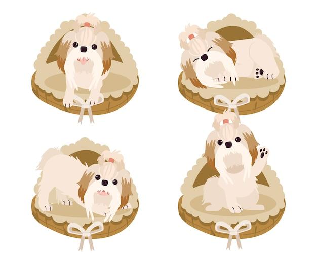 Une collection de mignon shih tzu sur un panier de matelas ou un lit pour chien