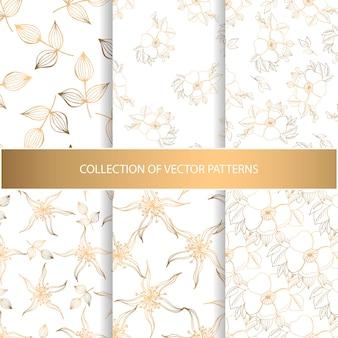 Collection de modèle sans couture dessiné main avec éléments floraux