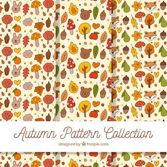 Collection de modèles automne avec des éléments