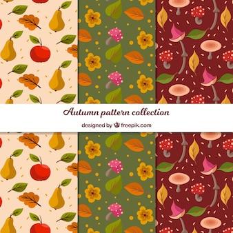 Collection de modèles automne avec des feuilles plates
