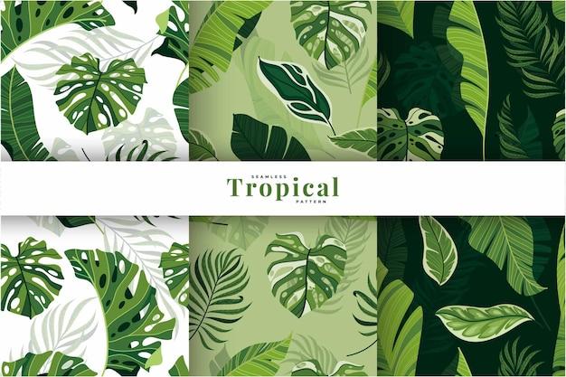 Collection de motifs de feuilles tropicales exotiques dessinés à la main