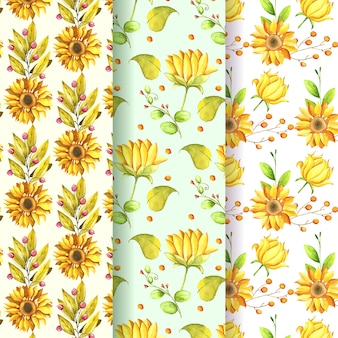 Collection de motifs de tournesol aquarelle