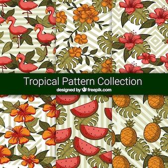 Collection de motifs tropicaux