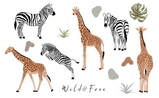 Collection d'objets animaux avec girafe, zèbre. illustration vectorielle pour icône, autocollant, imprimable
