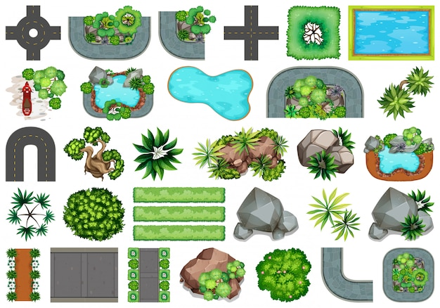 Collection d'objets de la nature en plein air et d'éléments de plantes